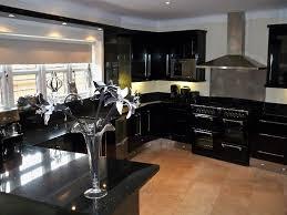 kitchen ideas black cabinets. Kitchen Design Ideas Black Cabinets Photo - 1