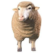 design toscano 26 in h merino ewe head