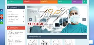Web Designing In Jalandhar Royal International Website Designer In Jalandhar Punjab