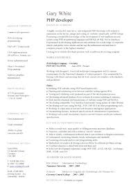 Resume Template Software Java Developer Resume Template Software Developer Resume Template