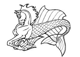 Free Sea Horse Images Download Free Clip Art Free Clip Art On