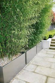 fence:Bamboo Fence Screening Garden Screening Stunning Bamboo Fence  Screening Bamboo Screening Contained Within Planters