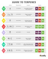Beta Base Info Show Basic Chart 2019