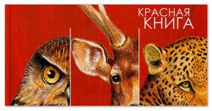 Доклад на тему Красная книга России редкие и исчезающие растения  Исчезающие и редкие животные и растения