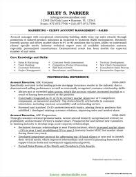 Executive Resume Sample Account Executive Resume Sample Free Resume Resume Exa RS Geer 15