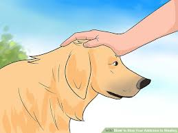 ways to stop your addiction to stealing wikihow image titled stop your addiction to stealing step 16