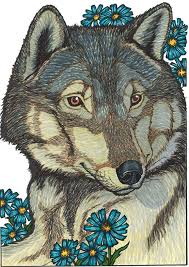 gray wolf drawing colored.  Colored Gray Wolf Colored With Markers Line Drawing From Creative Havenu0027s Wild  Animal Portraits Coloring Book By Llyn Hunter For Wolf Drawing