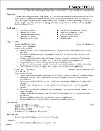 Resume Examples For It Professionals Letter Resume Directory