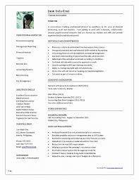Word Format Resume Fresh Resume Unique Resume Format Template