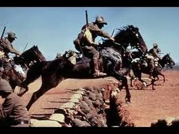 Image result for Free images australian light horse