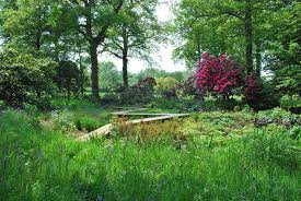 Small Picture Garden Design Courses South East England izvipicom
