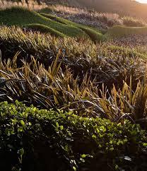 Plantation Designs Devon Inspirational Garden Design Devon Conrad Batten