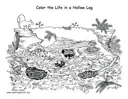 Biome Coloring Worksheet Coloring Pages Lake Coloring Page ...