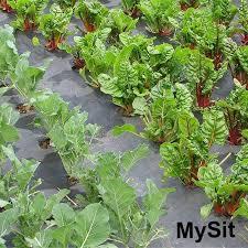 ซ อ garden staples u shaped iron pins