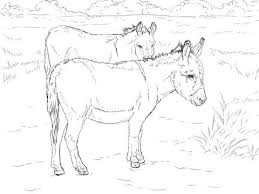 Small Picture 443 best Coloring Horses images on Pinterest Colouring Coloring