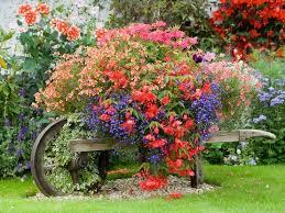 Resultado de imagen de fotografias de primavera