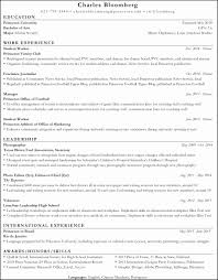 Professional Resume Templates 2015 Awesome Resume Examples 2015