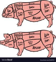 Cut Of Meat Set Hand Drawn Pig Pork Cuts Diagram