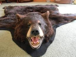 fake bear skin rug with head for