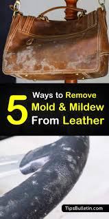 find out how to remove mold from leather goods using proven stain removers like rubbing alcohol
