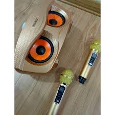 Loa Karaoke Bluetooth Di Động SDRD SD 306 Plus Loa kèm 2 micro hát karaoke  Không dây- Phiên Bản Nâng cấp giá cạnh tranh