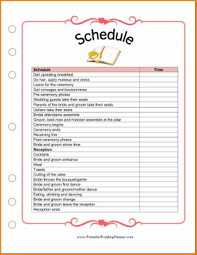 Professional Schedule Template 023 Free Printable Wedding Planner Excel Spreadsheet