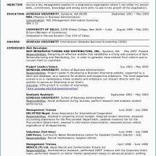 Personal Statement For Resume Sample Personal Statement For Resume Thomasdegasperi Com