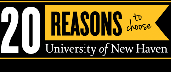 reasons to choose the university of new haven s college of arts  what path will you choose