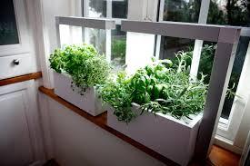 Hanging Kitchen Herb Garden Kitchen Window Herb Garden Aromabydesignus
