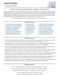 Great Resume Examples Fascinating Financial Controller Resume Example