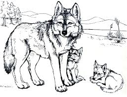 Small Picture wolf coloring pages free 28 images get the coloring page wolf