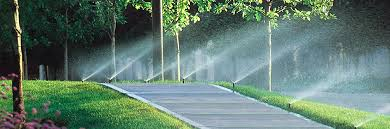 Image result for about sprinkler repairs.