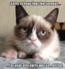 GRUMPY CAT on Pinterest | Grumpy Cat Meme, Grumpy Cat Quotes and ... via Relatably.com