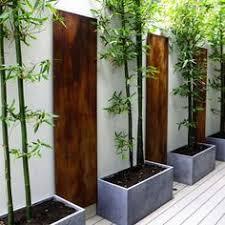 Small Picture Zen garden landscaping ideas