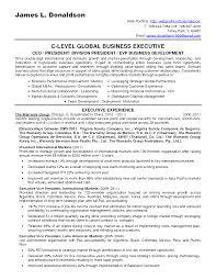 Business Business Developer Resume