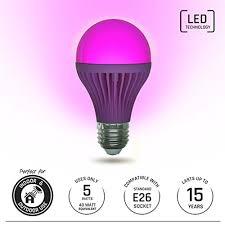 Pink Led Outdoor Lights Light Itup Led Light Bulb 5 Watt Indoor And Outdoor Energy Efficient 40 Watt Equivalent Home