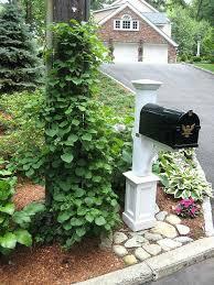 mailbox landscaping with culvert. Perfect Culvert Landscape Around A Mailbox Garden Ideas  Photos And Mailbox Landscaping With Culvert