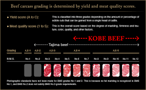 Meat Color Chart Criteria For Kobe Beef Kobe Beef