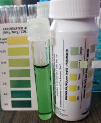 Tetra Ammonia Test Strips Color Chart Jungle Ammonia Test Strip My Aquarium Club