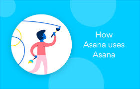 Asana Design Blog How Asana Uses Asana Tips For Designing Standout Creative