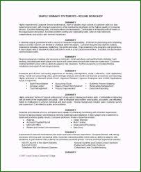 Resume Executive Summaries Magnificent Executive Summary Resume For Your Job
