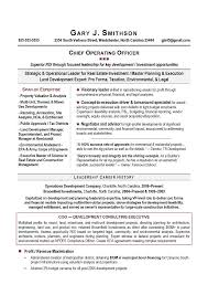 Environmental Officer Sample Resume Inspiration COO Sample Resume AwardWinning Executive Resume Writing Service