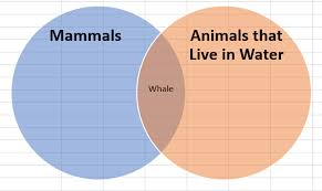 Make A Venn Diagram In Powerpoint How To Make A Venn Diagram In Excel Lucidchart