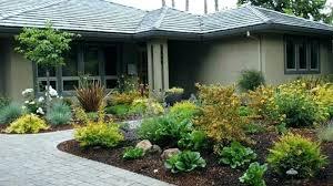front yard design ideas no grass