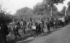 """Résultat de recherche d'images pour """"juin 1940"""""""