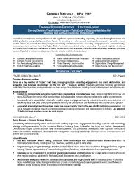 Business Owner Resume Sample Resume Samples Program Finance Manager FPA Devops Sample 72
