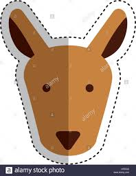 Kangaroo Character Design Cute Kangaroo Character Icon Vector Illustration Design
