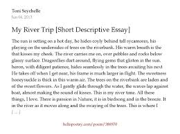 descriptive essay about a trip my first trip essays