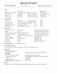 Picture Of Resume Free Resume Example And Writing Download