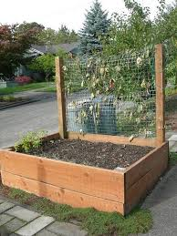 Small Picture Backyard Garden Box Design Garden ideas and garden design